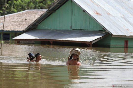 Distanak Sultra taksir kerugian akibat banjir Rp168,5 miliar