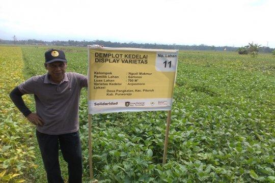 Akademisi ingatkan petani gunakan benih baru kedelai