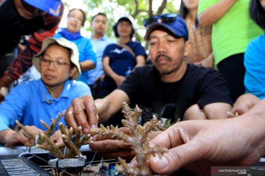 Diplomasi lingkungan hidup Indonesia didorong untuk tonjolkan isu laut