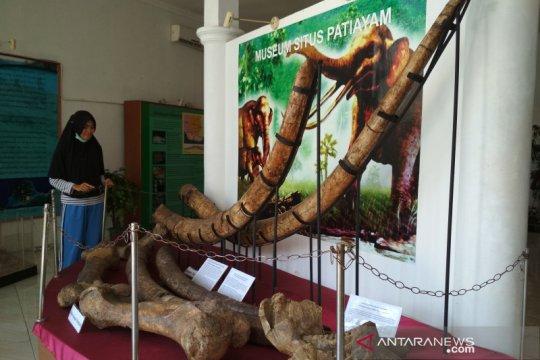 Koleksi fosil di Museum Patiayam Kudus bertambah