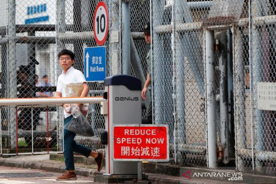 Aktivis mahasiswa Joshua Wong bebas
