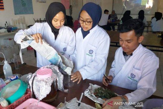 Mahasiswa UM Bandung olah daun cincau jadi kapsul anti inflamasi
