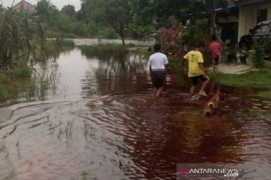 Pengamat: Pemerintah Kota Pekanbaru belum optimal atasi banjir