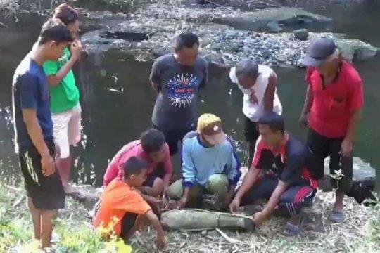 Warga Ngawi temukan fosil tulang paha gajah purba