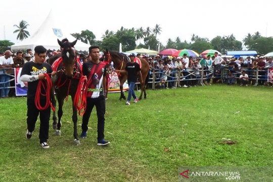 Budayawan: tradisi pacu kuda alami pergeseran cara pandang