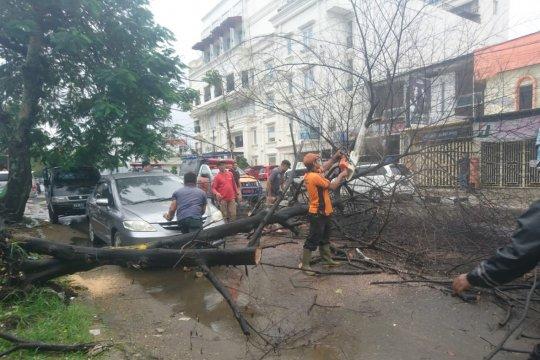 Cuaca buruk di Padang sebabkan 10 pohon tumbang