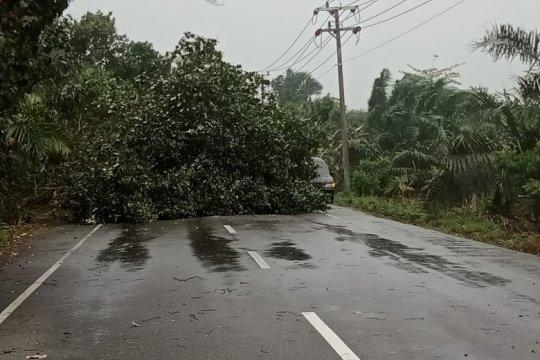 BMKG: Kecepatan angin kencang melanda Aceh 80 km/Jam