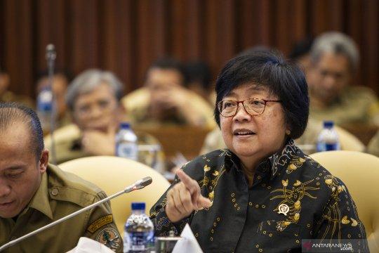 Tahap selanjutnya LoI Norwegia-Indonesia dibahas Menteri LHK