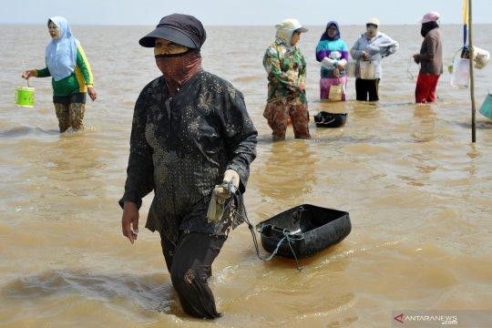 Kiara: Perkuat serapan hasil tangkapan ikan perempuan nelayan
