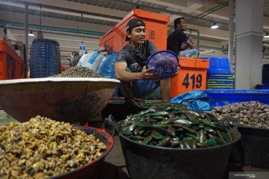 Riau ekspor empat ton kerang ke Thailand