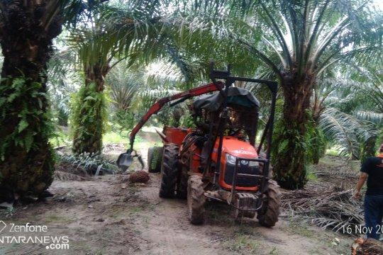 Kementerian ATR: HGU punya kekuatan hukum dalam usaha perkebunan