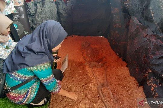 Kerangka Manusia Oluhuta menarik minat pengunjung Pameran Arkeologi