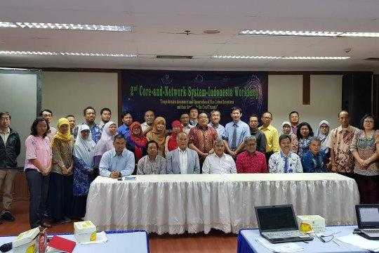 KKP dorong kerja sama RI-Jepang konservasi karbon biru