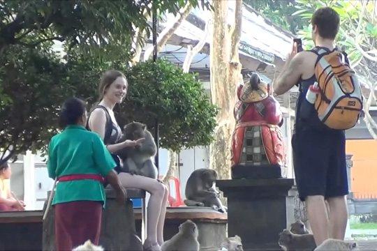Hutan kera, pilihan libur Lebaran di Tabanan Bali