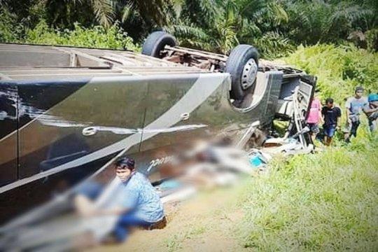 Bus rute Pontianak-Sampit terbalik di Lamandau tiga tewas