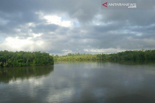 Papua Barat upayakan kawasan hutan konservasi jadi 70 persen