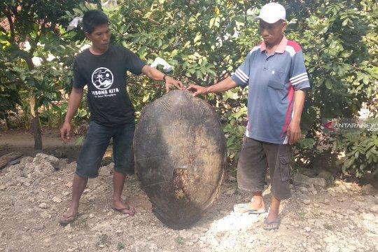 Kelompok warga secara swadaya menjaga penyu di pesisir Tulungagung