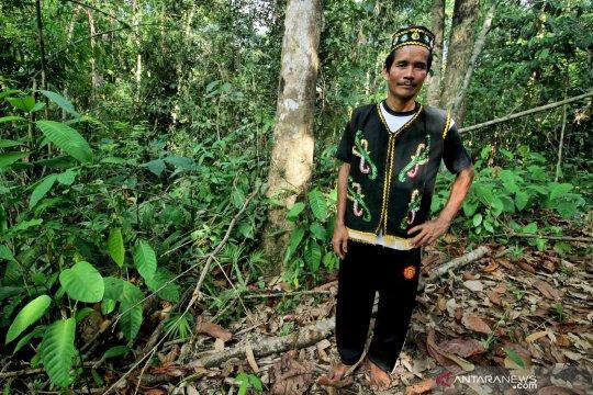 Hutan dan Masyarakat Adat Seberuang