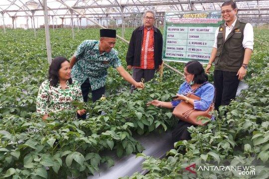 Kementan ingin semangat petani Sembalun NTB bangkit lewat korporasi