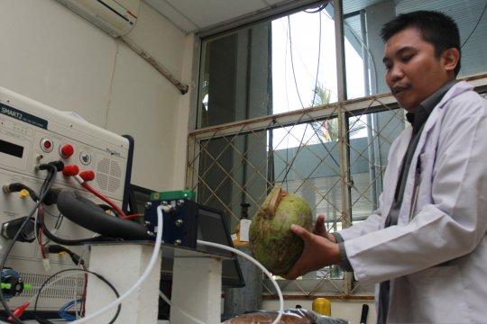 Energi listrik dari sabut kelapa