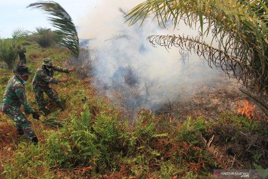 Kebakaran lahan gambut di Nagan Raya, Aceh