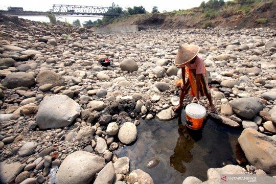 Tujuh kabupaten/kota di Jawa Barat hadapi dampak kekeringan