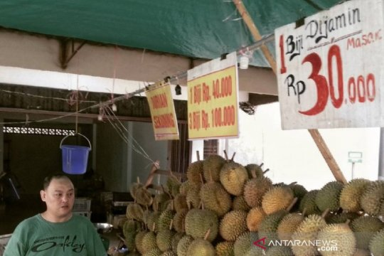 Durian mulai banjiri Pulau Bintan
