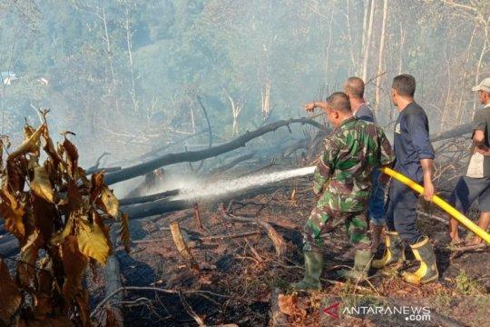 Kebakaran hutan di Aceh capai 60 ha sepekan terakhir