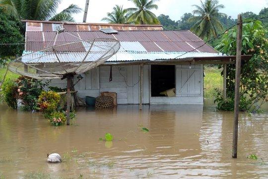 BNPB: 184 kepala keluarga terdampak banjir di Halmahera Tengah