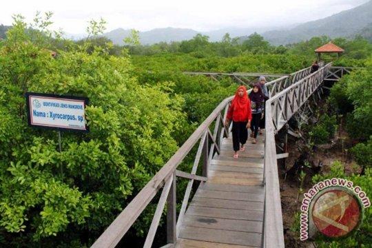 Menteri LHK: Pelestarian hutan mangrove stabilkan kondisi lingkungan