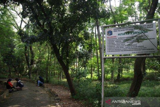 Selama kemarau, Hutan Kota Srengseng andalkan waduk untuk pengairan