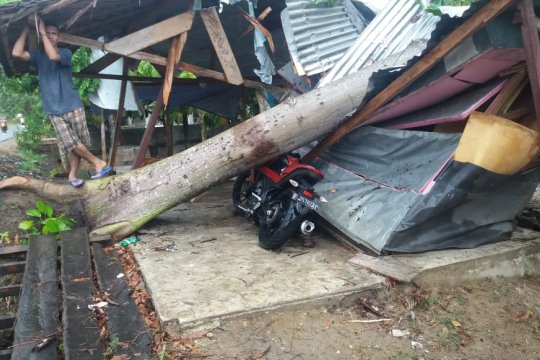 Empat rumah warga rusak akibat hujan badai di Bireuen Aceh