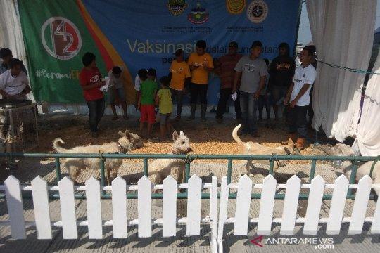 Garut jadi daerah pemasok anjing terbesar ke Sumatera