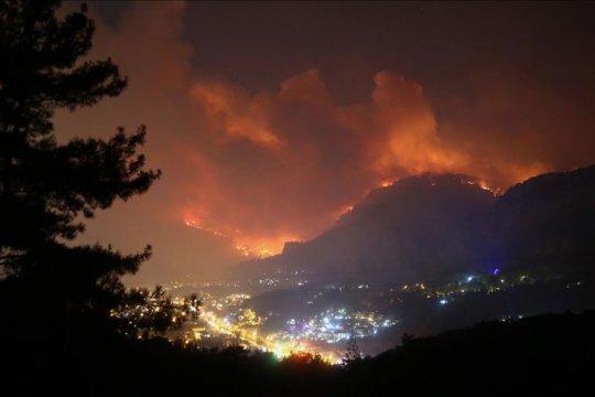 Petugas berjuang kendalikan kebakaran hutan di Turki barat daya