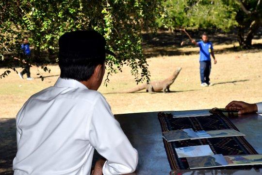 Presiden ingatkan konservasi TN Komodo dalam pembangunannya