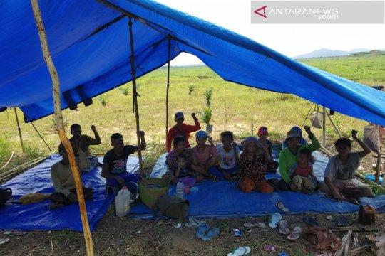 Walhi: Rencana RTRW berpihak pada investor ketimbang pangan rakyat