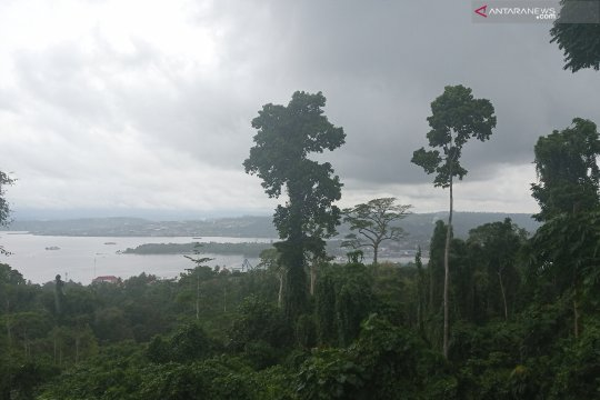 Seluruh wilayah di Papua Barat diperkirakan hujan Selasa-Rabu