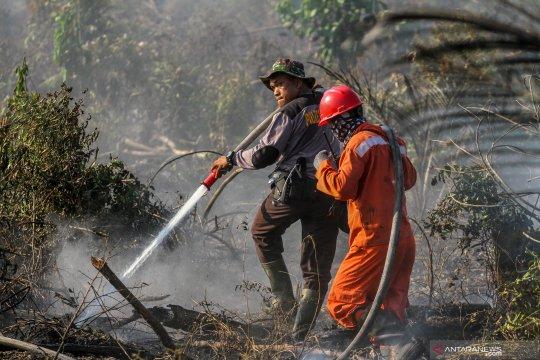 KLHK bangun 35 posko patu cegah karhutla di Riau
