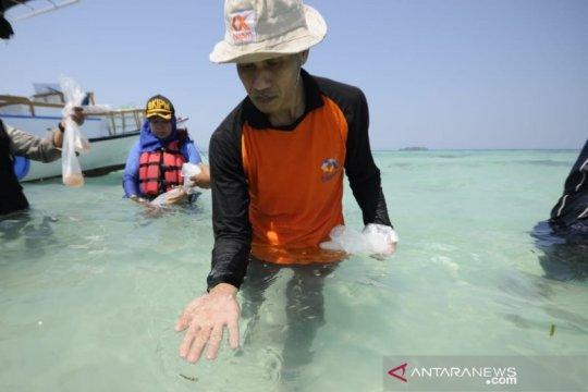 BKIPM Semarang lepas liarkan benih lobster di Karimunjawa