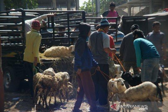 Harga kambing mulai naik jelang Idul Adha