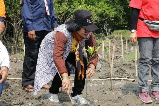 Lampung gelar persiapan Festival Krakatau 2019 di Pulau Sebesi