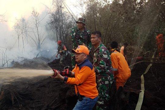 Kebakaran hutan dan lahan terus intai Sumsel