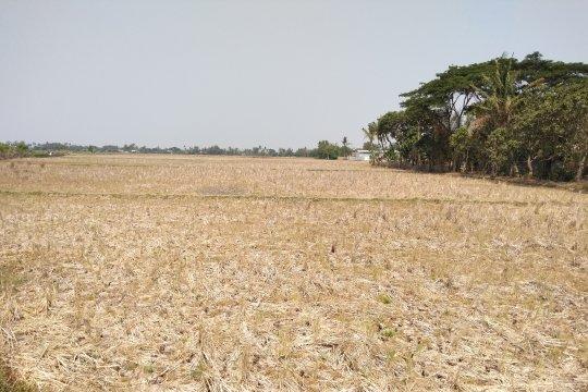 BPBD Karawang salurkan ribuan liter air bersih ke daerah kekeringan
