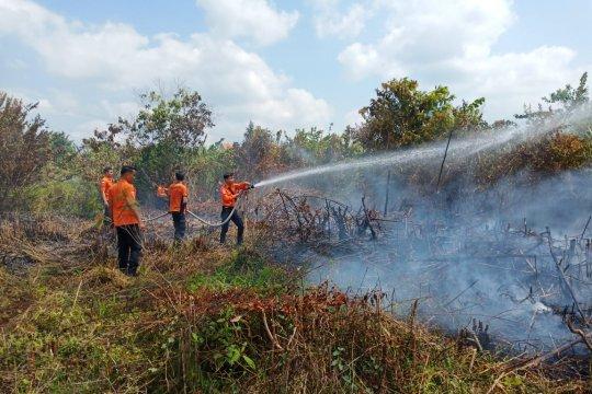 Kebakaran semak belukar terjadi di Kabupaten Musi Banyuasin