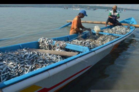"BPSPL jelaskan video viral ikan ""terdampar"" di Pantai Batu Bolong"