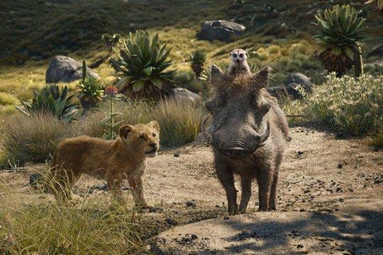 """""""The Lion King"""", nuansa nyata dalam kisah Raja Rimba merebut kejayaan"""