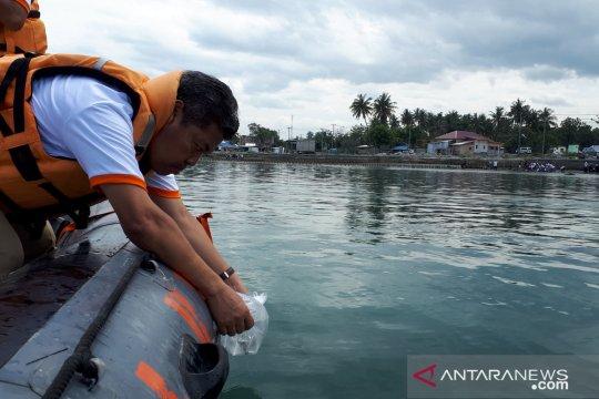 BKIPM lepas berbagai spesies ikan di Teluk Palu