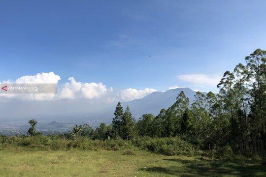 UB Forest berencana kembangkan kawasan hutan untuk wisata edukasi