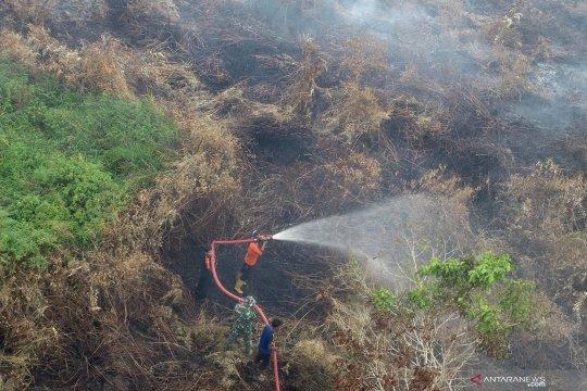 Kebakaran lahan terus meluas di Aceh Barat