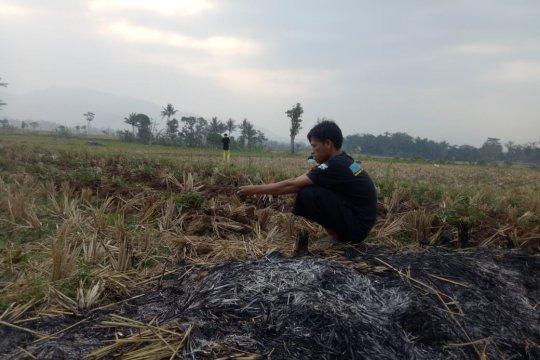 BPBD Cianjur: 76 desa alami kekeringan